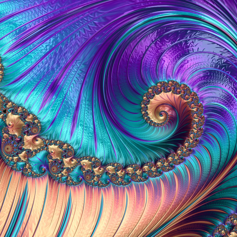 'Feathered Fractals' Collection